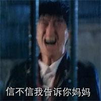 恶搞张翰图片带字qq表情最新版张翰表情_手跑图艾特完民国就表情包猪图片