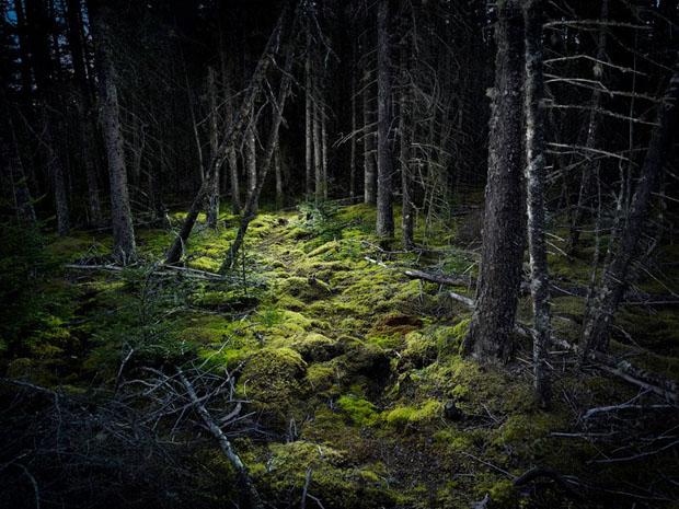 作品赏析:用LED拍摄独特夜景照片4