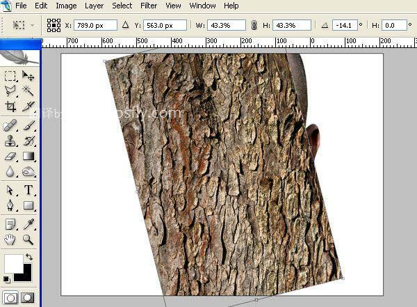 Photoshop合成科幻片中的树人魔怪4