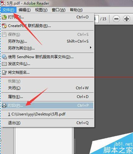 PDF文件怎么打印? 打印pdf文件特定页设置方法6