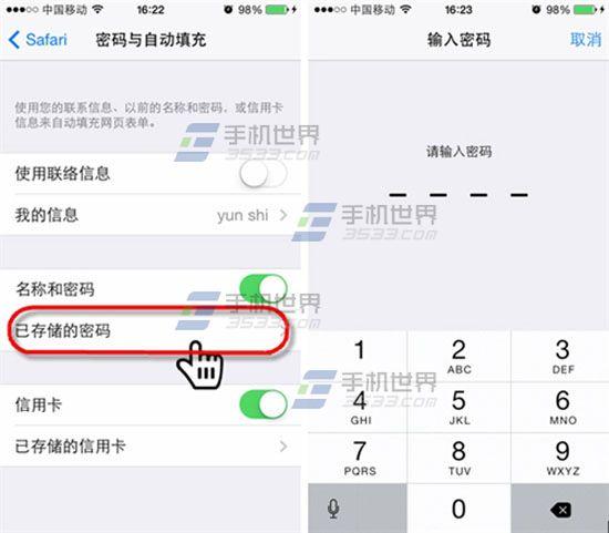 iPhone6 Safari密码查看方法3