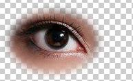 Photoshop两种方法给美女的眼睛变大5