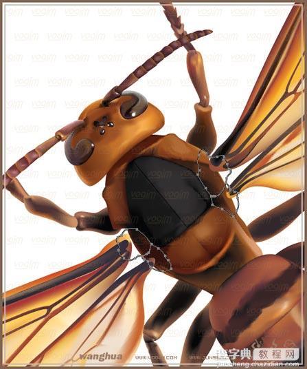 Illustrator網格實戰:繪制真實的黃蜂35